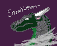 Smokeseer
