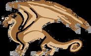 Gaboon (Male)