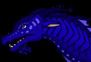 Seahorseheadshotref