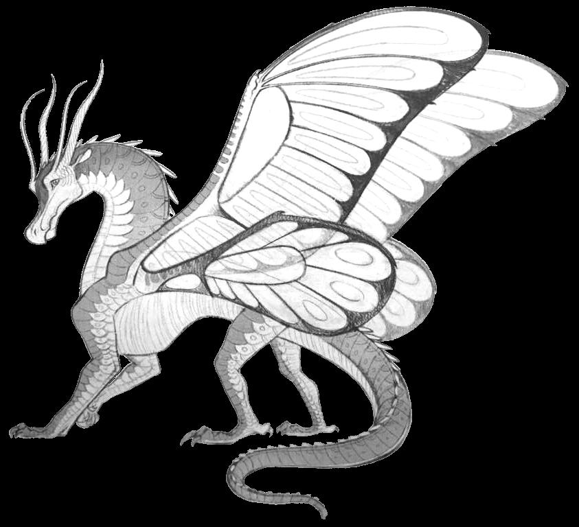 Silkwings Wings Fire Wiki Fandom Powered Wikia