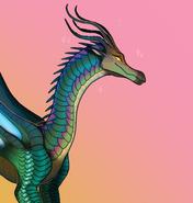 Beauty drago