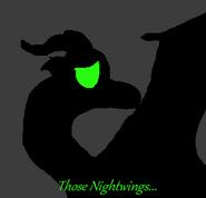 Those Nightwings...