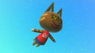 Katt Spin