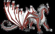 Shrike peregrinecella