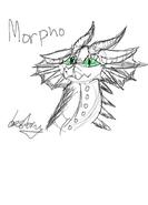 MorphoXD