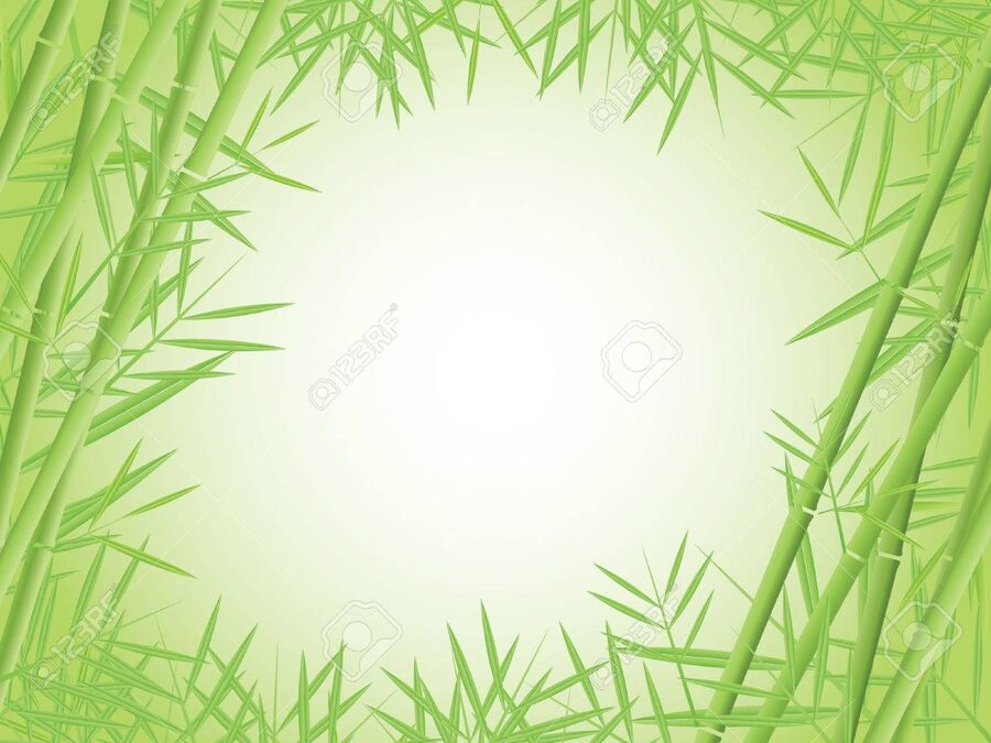 8147765-bamboo-vector-background