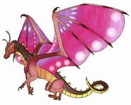 Hydraa