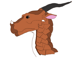 Antelopeheadshot