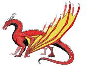 Hawk coloured