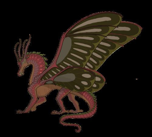 Mayflythegrump