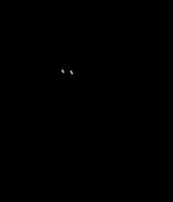 NightWingToonyBase