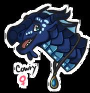 Cowry headshot