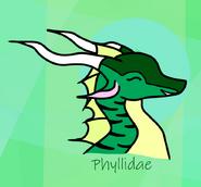Phylliidae