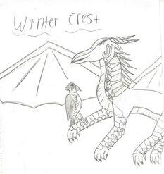 Winter crest