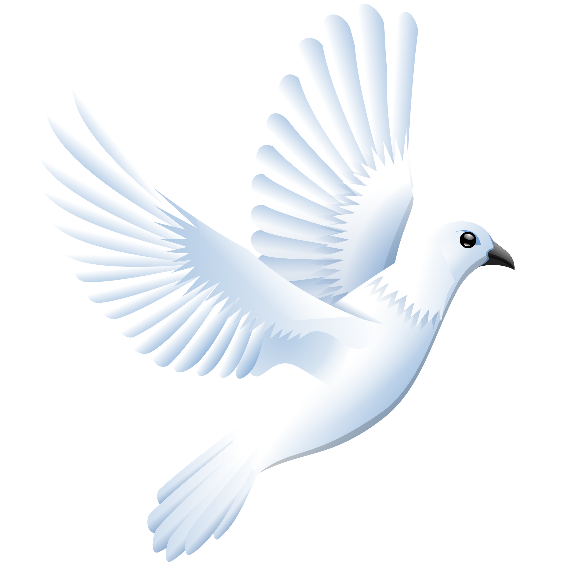image dove images png 16 png wings of fire fanon wiki fandom