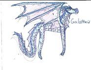 Galatheid-trade