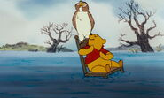 The Many Adventures of Winnie the Pooh Owl and Pooh Bear