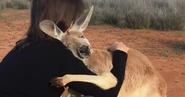Rescued-hugging-kangaroo-abigail-australia-fb