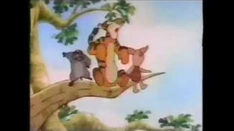 The New Adventures Of Winnie The Pooh ABC Promo 1988