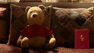 Winnie the Pooh is a stuffed bear