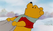 The Many Adventures of Winnie the Pooh Then Bounce Down