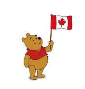 Canada pooh bear