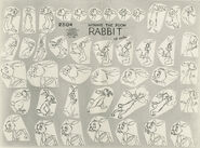 Rabbit model sheet