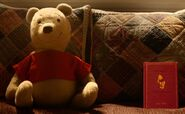 Winnie the Pooh stuffed toy bear and book