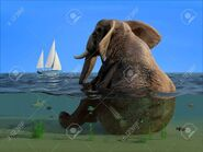 53742092-the-elephant-is-sitting-in-the-water-
