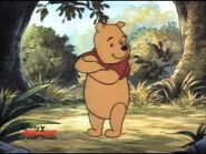 The New Adventures of Winnie the Pooh 282839022