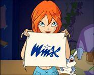 Il simbolo del Winx Club