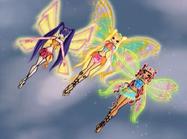 Musa, stella, aisha enchantix 312