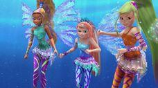 Aisha, bloom e stella sirenix 520