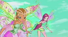 Flora bloomix e roxy in 703