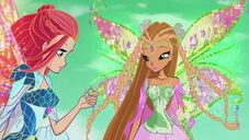 Bloom e flora bloomix in 619