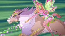 Winx and Fairy Animals 06062