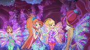 Flora, bloom, stella e aisha sirenix 809
