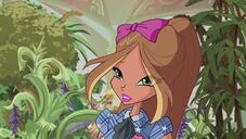 Flora in 611