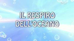 Il respiro dell'oceano