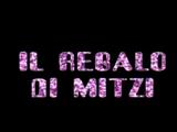 Il Regalo di Mitzi