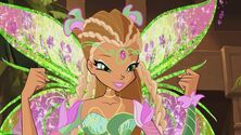 Flora bloomix in 608
