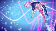 Musa sirenix s8 5