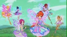 Winx butterflix in 723