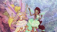 Stella e aisha harmonix 508