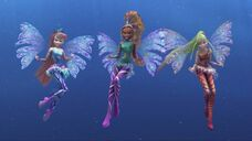 Bloom, aisha e stella sirenix 516