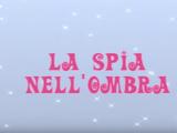 La Spia Nell'Ombra