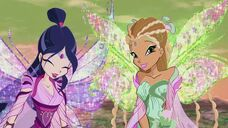 Musa e flora bloomix in 626