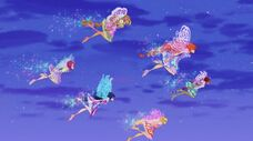 Winx butterflix in 710