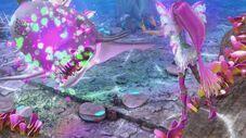 Fiore di loto 3 518