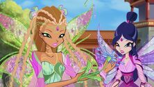 Flora e musa bloomix in 609